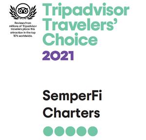 Trip Advisor Traveler's Choice 2021 for Semper Fi Charters
